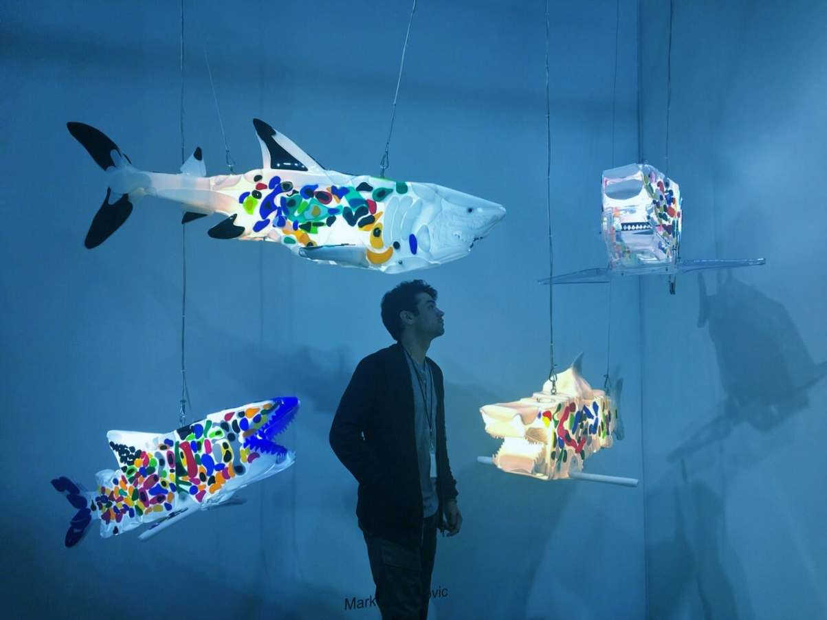 Marko Gavrilovic, shark sculptures, lets talk
