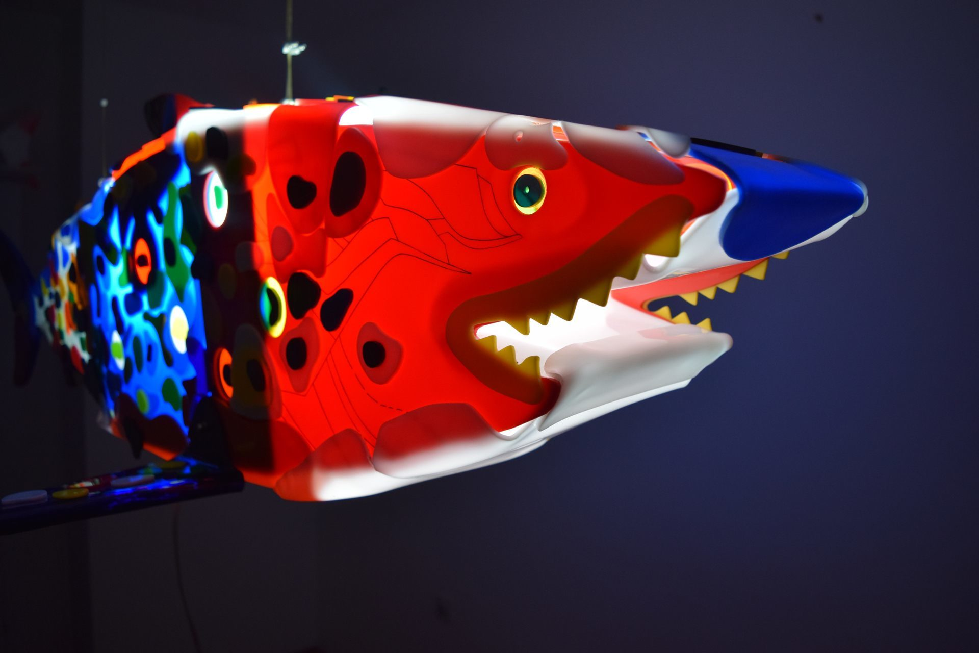 Red and blue shark sculpture made from Plexiglas